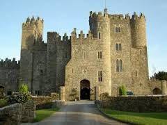 Castle hotels for sale in ireland