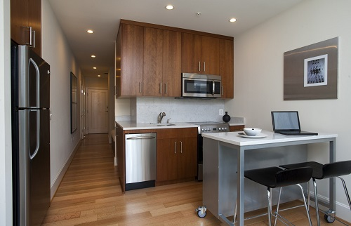 The typical market for Micro Apartments tends to be young hipsters under the age of 30.